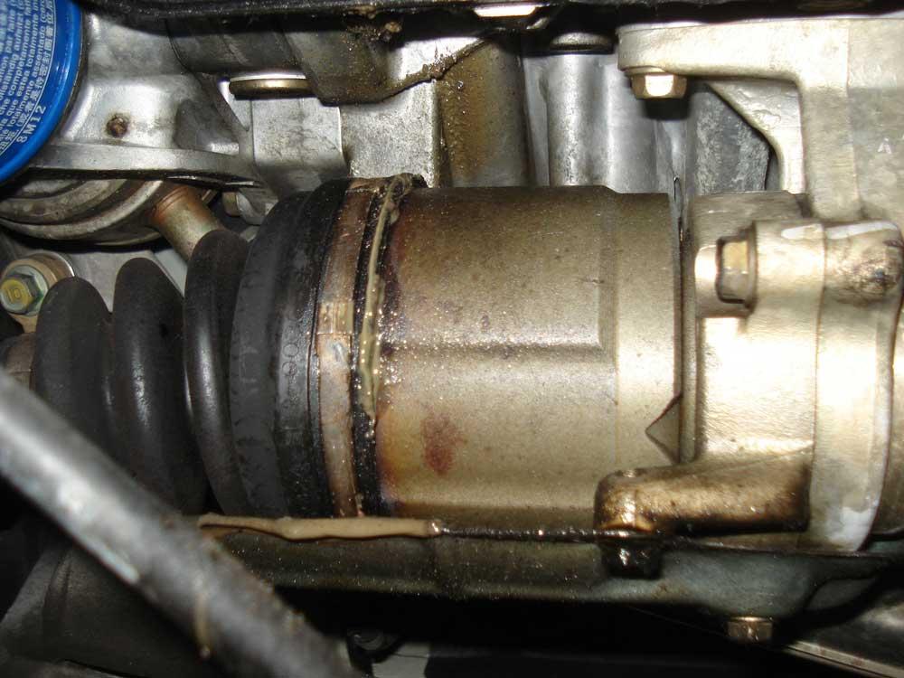 Rear Cv Boot Leak Question